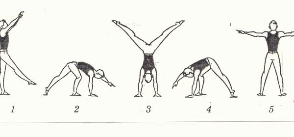 Как правильно делать колесо в гимнастике
