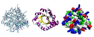 Метод Леди Вайт - как рассчитать белки и углеводы